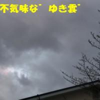 この冬一番の寒さ。。(@▽@;)