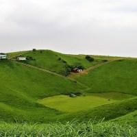 緑が映える山の写真