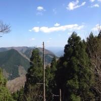 皆子山、東尾根〜寺谷     おっさん&ジーちゃんズハイキング           2017-4-28