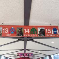 日本ダービー観戦記2017