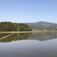 水鏡のような田んぼからの足尾山