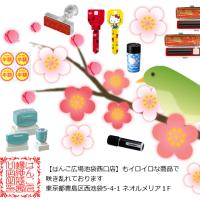 「梅」の花の観賞お勧めです。