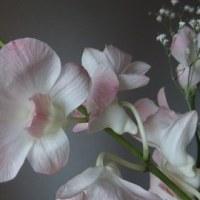 花を飾って運気アップ7