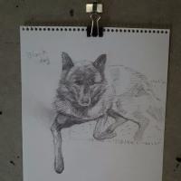 いとうけいこ陶芸展「黒い犬」、と いちきゅっぱー