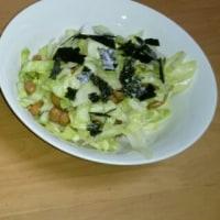 喉によいレンコンを使った豆腐ハンバーグと納豆消費サラダ