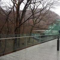 雨の箱根旅*②