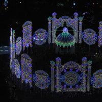 掬星台と神戸ルミナリエの輝き。
