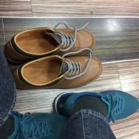 ゴローの靴と