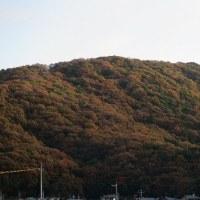 晩秋龍ノ口山
