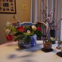ほのぼの編集会で疲労し、沢山の綺麗なお花たちに癒やされて