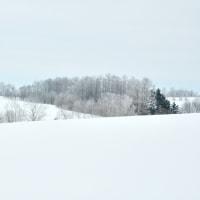 凍てつく丘