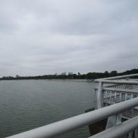 練習レースに最適! ベジタブルマラソン in 彩湖