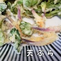 海辺の山菜・ハマボウフウは美味しいです(*^^)v