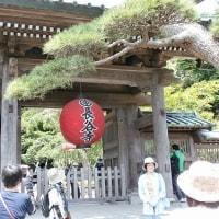 鎌倉あじさい寺めぐり(2017年)