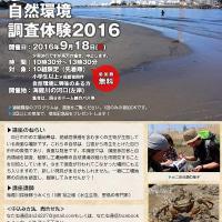 工業地区の自然環境調査体験2016 海蔵川の河口編を開催します!
