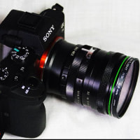 ����560�¡�SIGMA MULTI WIDEMAX YS 28mm F2.8��YS�ޥ���Ȥι���ñ����