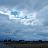 馬酔木(あしび)の蕾、立山は雲に覆われ風は冷たい・・・富山市水橋