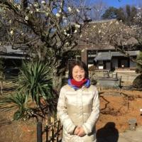 緑がく梅を見たくて「旧吉田家住宅歴史公園」に出かける。