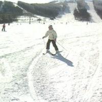11th Skiing in 菅平・・・「冬型」の日はやっぱり、ここ