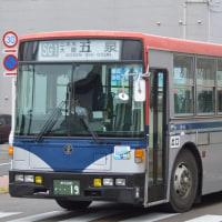新交観光 H19-N