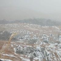 雪の平尾台