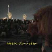 花火大会2016