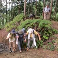 平成28年度 ハイキングサークル活動報告