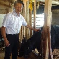 松阪牛の産地を歩いて地域の課題をヒアリングする