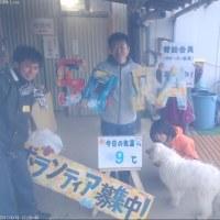 わんにゃん報告Blog-4/16~4/22-