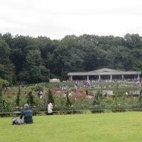 神代植物公園へ行ってきました。