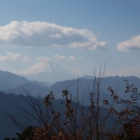 高尾山へ行ってきました
