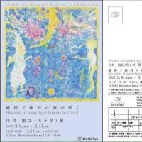 三月銀座初個展「銀座で銀河の華が咲く」川村朋之 Solo Exhibition