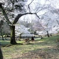 奈良へ一泊二日の旅 1