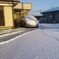 うわっ!…もう積雪…まあ、そうだよねー