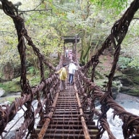 四国・剣山 ゆったり登山の旅   2日目