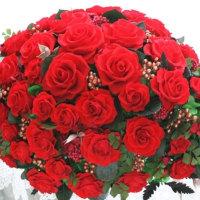 ♪四方見・真っ赤な薔薇♪
