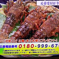 1/7・・・旅サラダプレゼント大至急11時まで