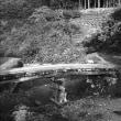 懐かしい物  木の橋