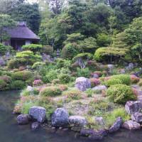 62 アチャコちゃんの京都日誌