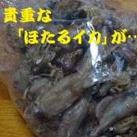 長崎県水産加工まつりin佐世保。