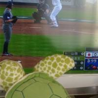 野球観戦三昧
