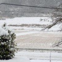 今日も雪まみれ