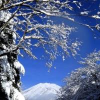 富士山 御殿場方面 11月:54年ぶり...   パート2