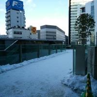 雪の後始末
