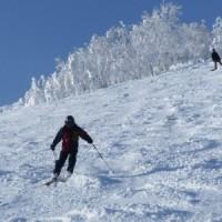 つかの間の晴れ間のスキー3)樹氷の輝き