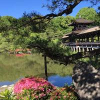 初夏の京都 〜 平安神宮・東神苑・泰平閣