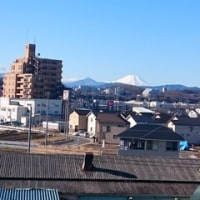 八王子にも、富士塚が ・ ・ ・