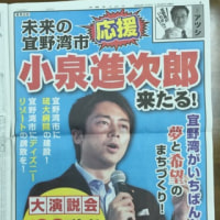 1月20日沖縄タイムス 1頁前面広告・・・なにそれ?