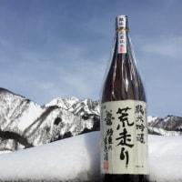 お福正宗「荒走り 純米吟醸生原酒」