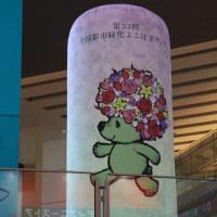 ガーデンベア@横浜山下公園